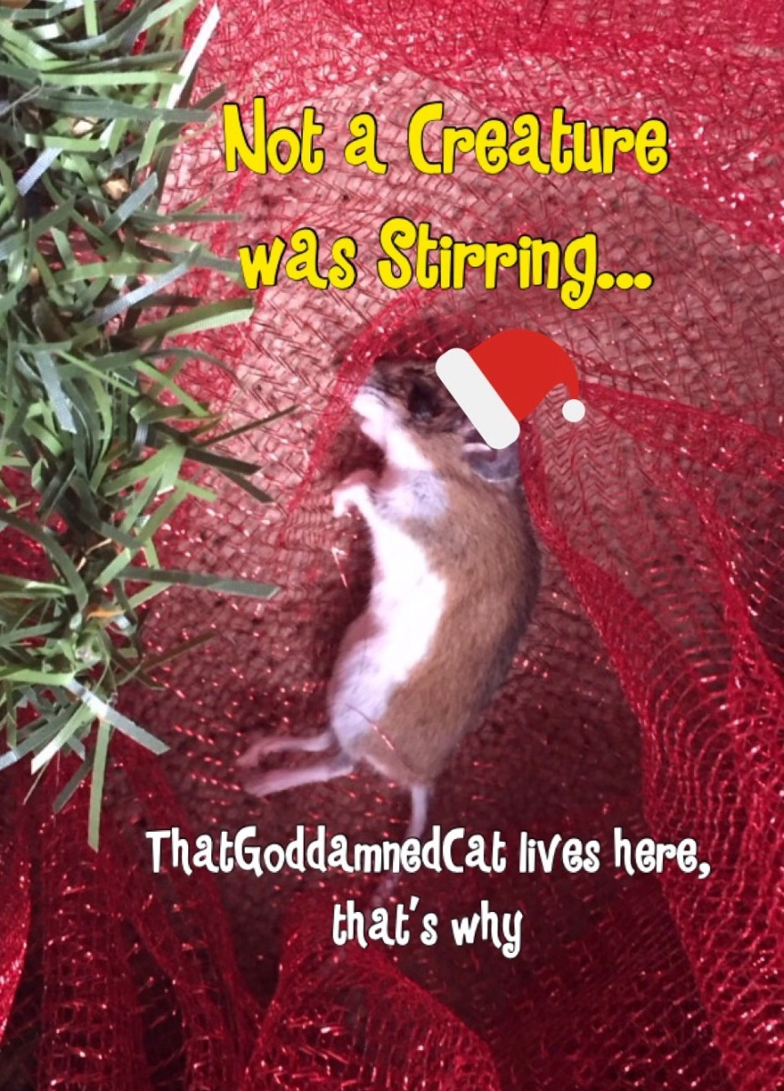 Not a Creature was Stirring: Holiday Chronicles of ThatGoddamnedCat