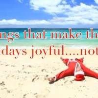 Things that make the Seasons Joyful- or Not